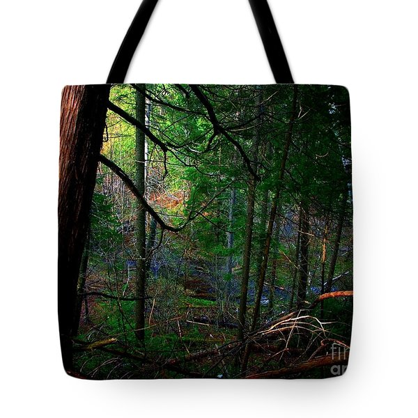 Whisperings Tote Bag by Elfriede Fulda