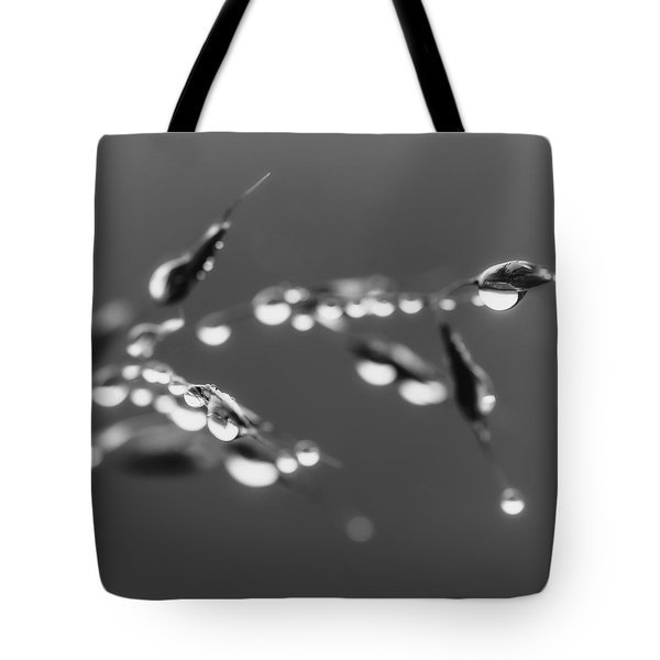 Whispers From The Heart Tote Bag
