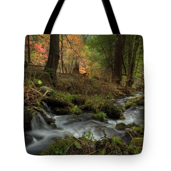 Whispers Of Autumn Tote Bag by Sue Cullumber