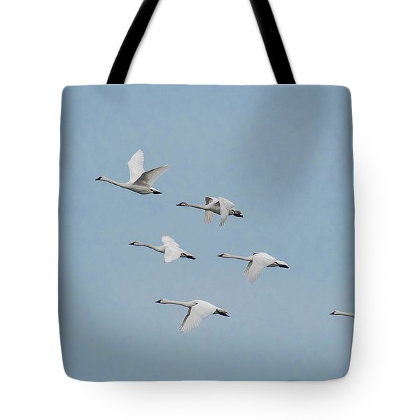 Whistling Swan In Flight Tote Bag