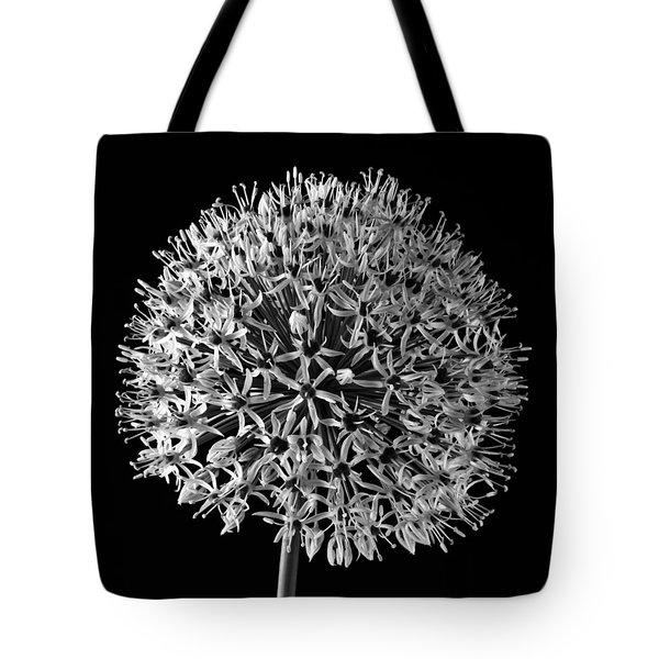 White Allium Tote Bag by Sandra Foster