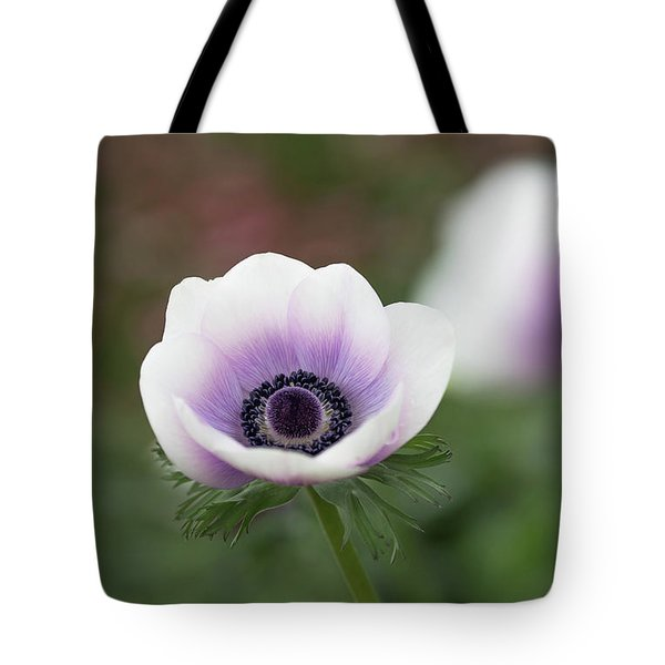 Tote Bag featuring the photograph White And Purple by Rebecca Cozart