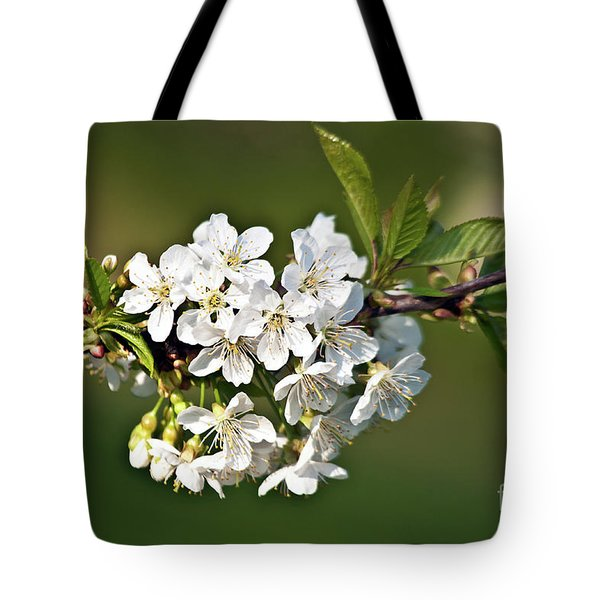 Tote Bag featuring the photograph White Apple Blossoms by Silva Wischeropp
