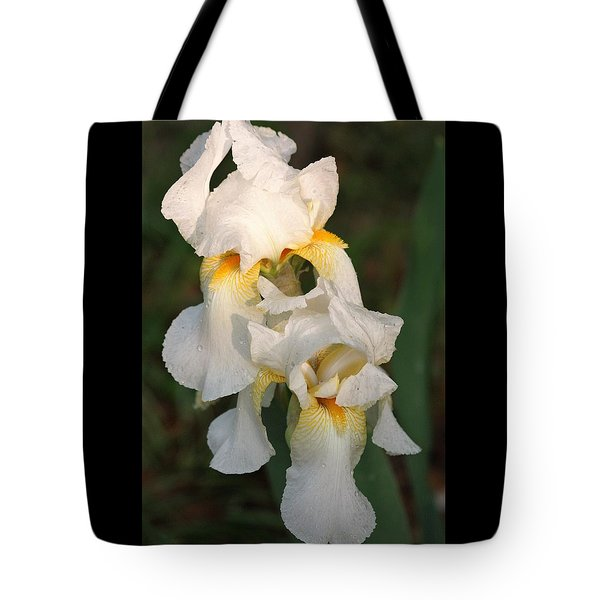 Tote Bag featuring the photograph Two White Bearded Iris At Dusk by Sheila Brown