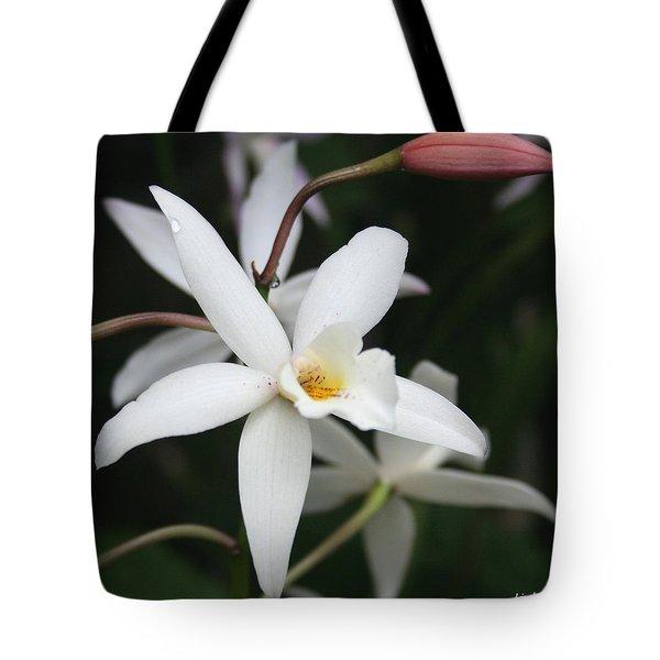 White Beauty Dove Tote Bag by Linda Sannuti