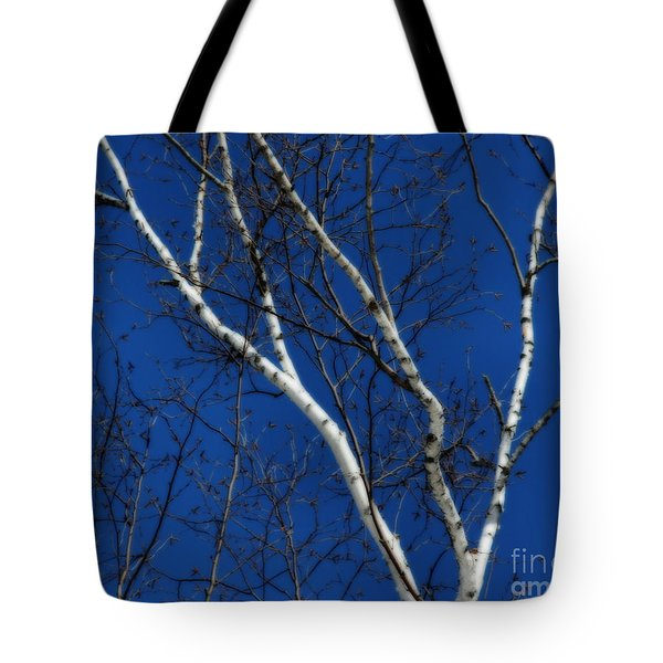 White Birch Blue Sky Tote Bag