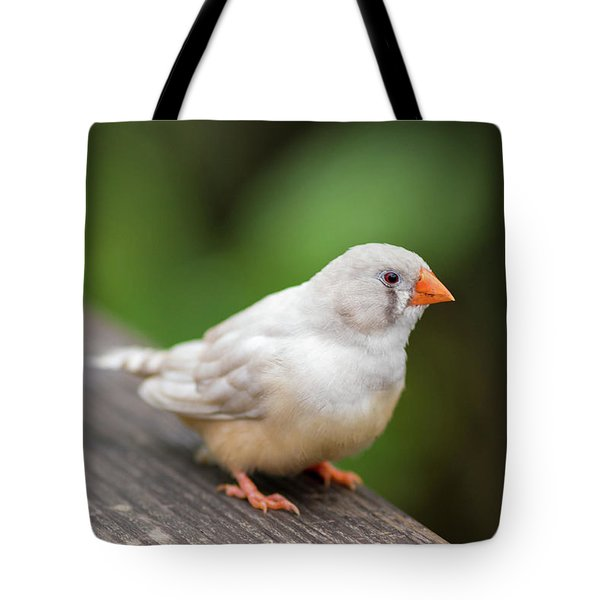 White Bird Standing On Deck Tote Bag