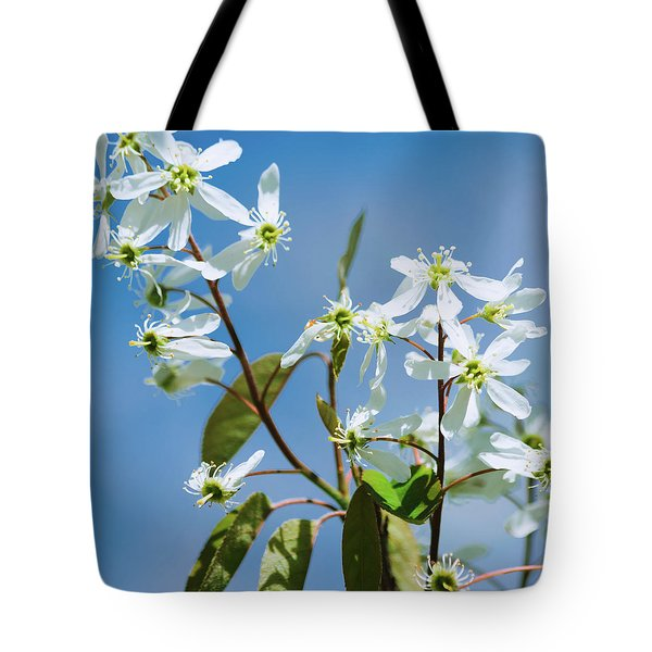 Tote Bag featuring the photograph White Blossom by Cristina Stefan