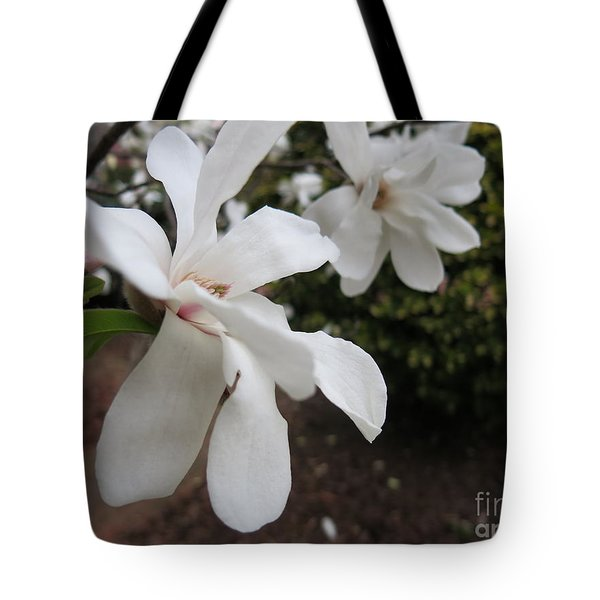 Tote Bag featuring the photograph White Blossoms by Rod Ismay