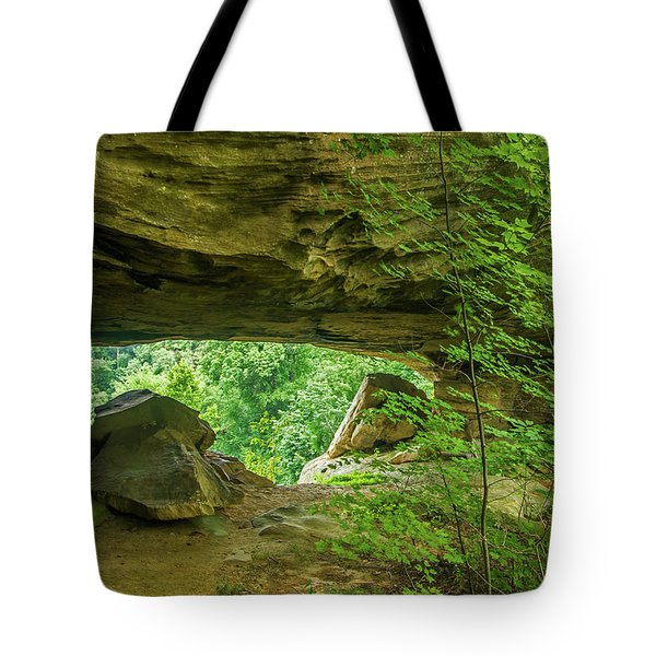 White Branch Arch Tote Bag by Ulrich Burkhalter