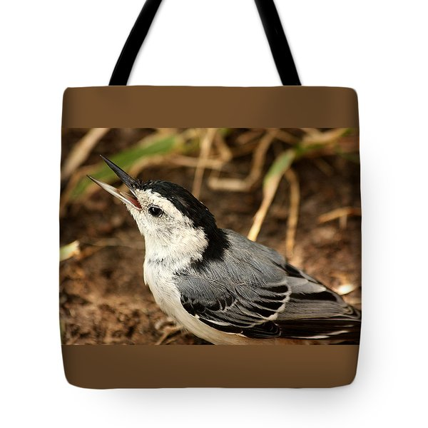 White Breasted Nuthatch 2 Tote Bag by Sheila Brown
