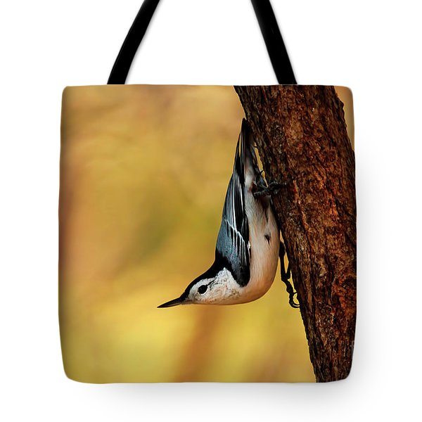 White-breasted Nuthatch Tote Bag by Darren Fisher