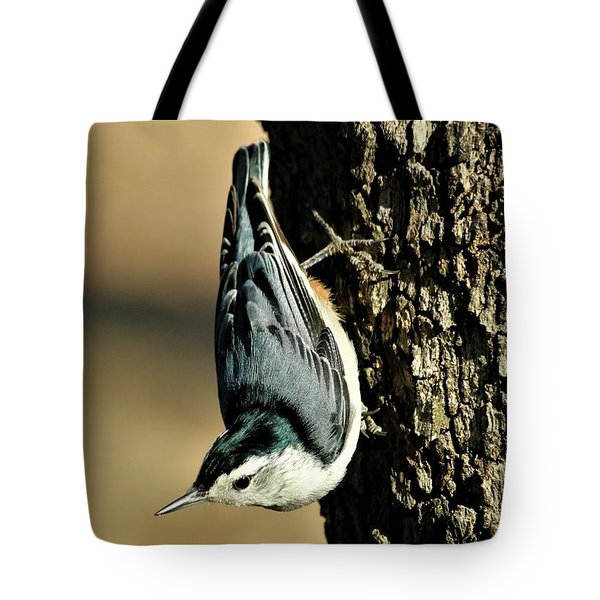 White-breasted Nuthatch On Tree Tote Bag by Sheila Brown