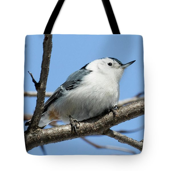 White-breasted Nuthatch Perched Tote Bag