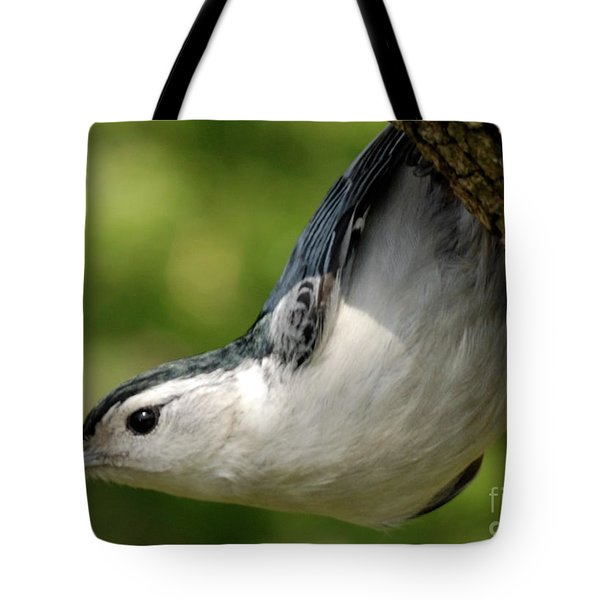 White-breasted Nuthatch Tote Bag