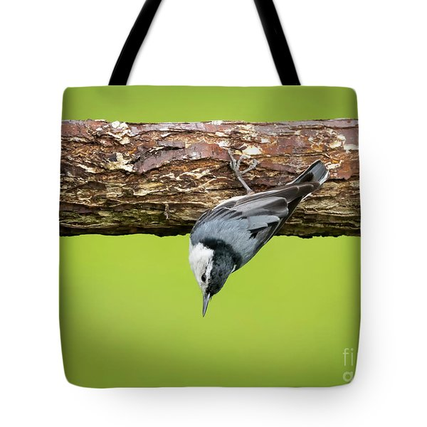 Tote Bag featuring the photograph White-breasted Nuthatches by Ricky L Jones