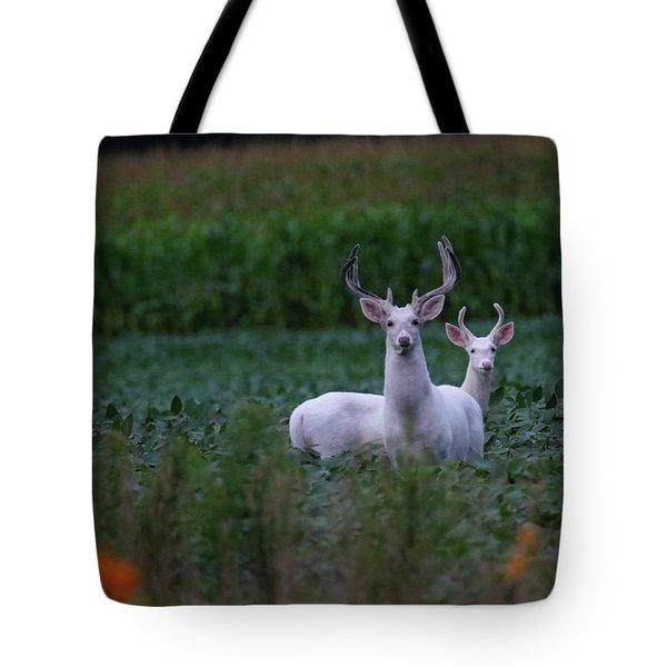 White Bucks Tote Bag
