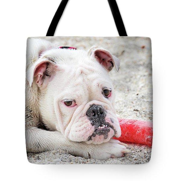 White Bull Dog Tote Bag