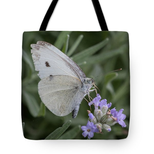 Tote Bag featuring the photograph White Butterfly On Lavender by Cathy Donohoue