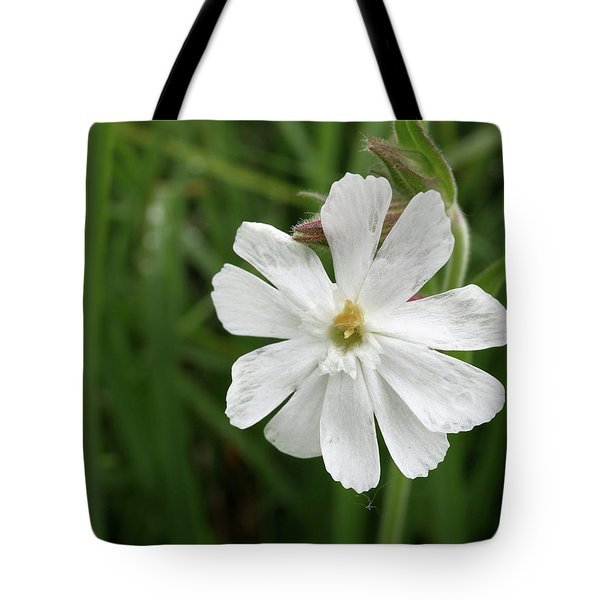White Campion Tote Bag by Scott Kingery