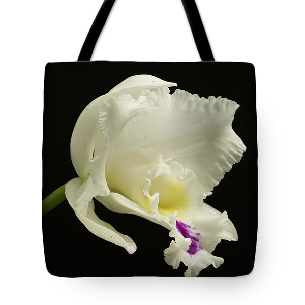 White Cattleya Orchid  Tote Bag