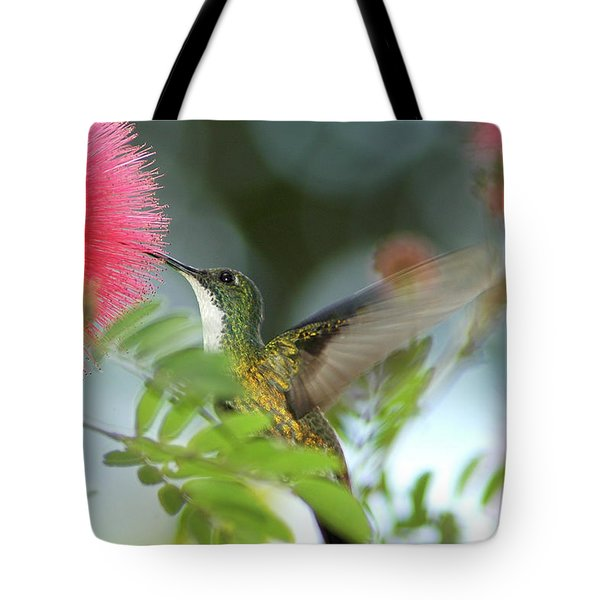 Tote Bag featuring the photograph White Chested Emerald Sips Powder Puff Flowers by Rachel Lee Young