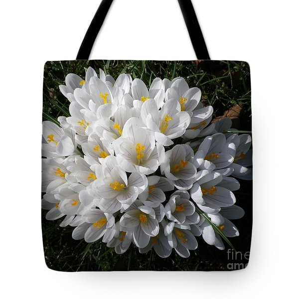 White Crocuses Tote Bag
