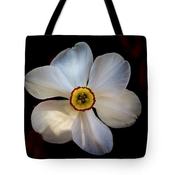 Tote Bag featuring the photograph White Daffodil by Jay Stockhaus