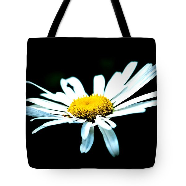 Tote Bag featuring the photograph White Daisy Flower Black Background by Alexander Senin