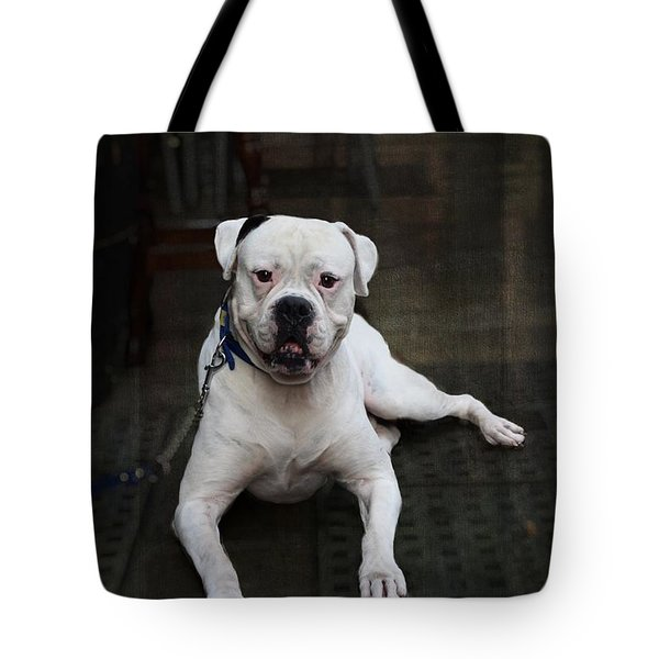 White Dog - Malaga Spain Tote Bag