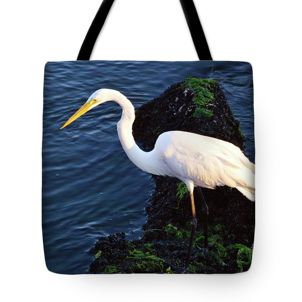 White Egret At Sunrise - Barnegat Bay Nj  Tote Bag