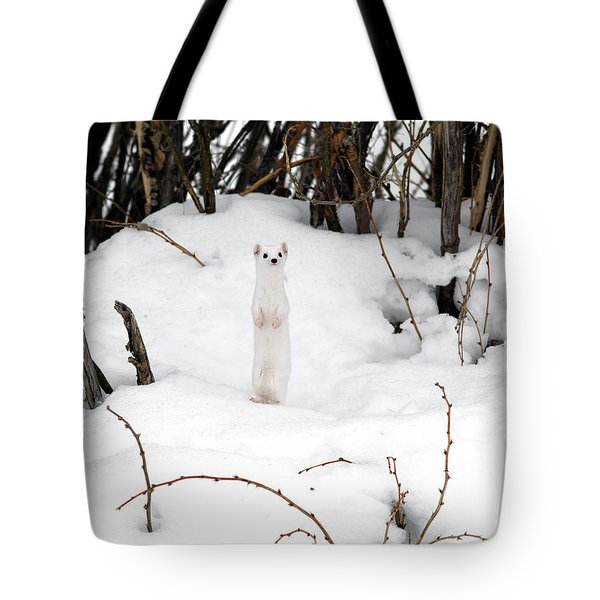 White Ermine Tote Bag by Leland D Howard