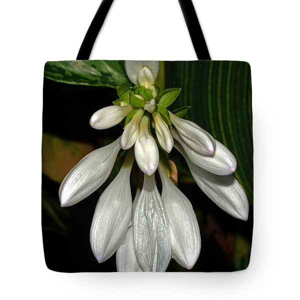 Tote Bag featuring the photograph Hosta - Royal Standard  by George Bostian