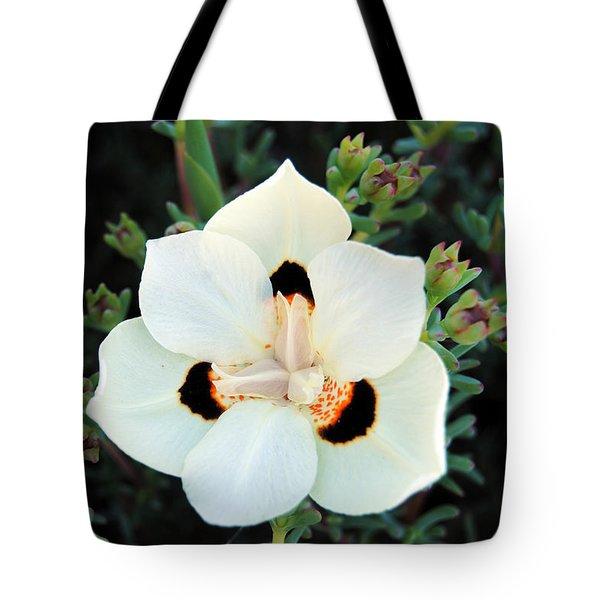 Peacock Flower Tote Bag