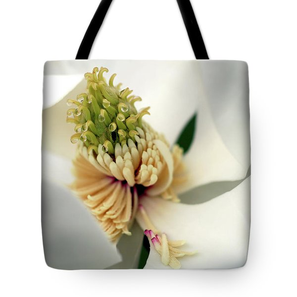 Tote Bag featuring the photograph Magnolia Blossom by Meta Gatschenberger