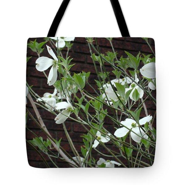 White Flowering Dogwood Tote Bag