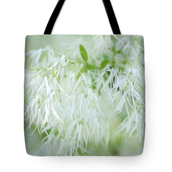 White Fringetree Tote Bag