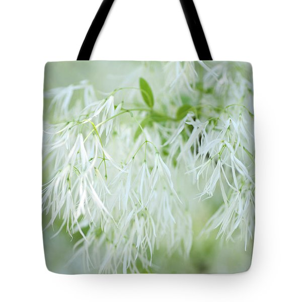 White Fringetree Tote Bag