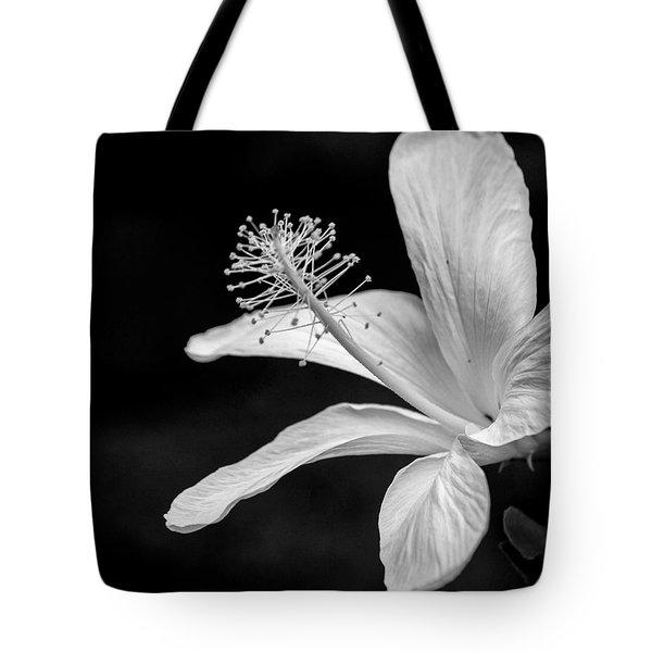 White Hibiscus Black And White Tote Bag by Debbie Karnes