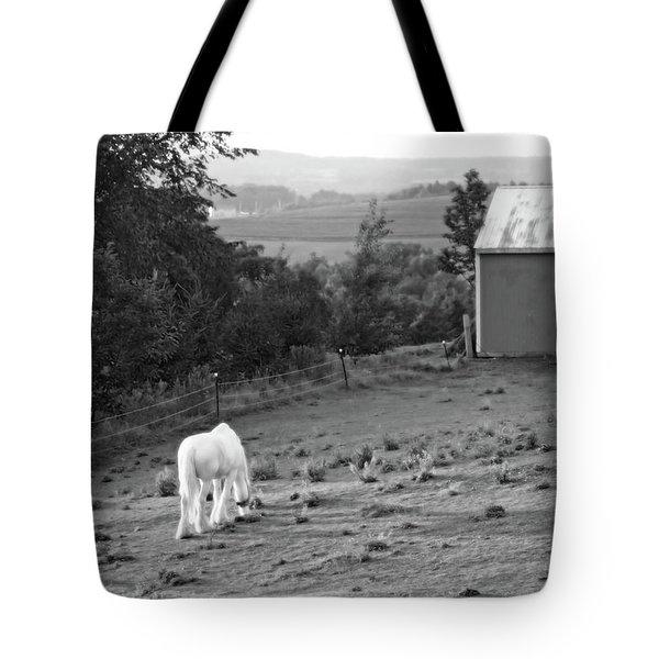 White Horse, New York Tote Bag