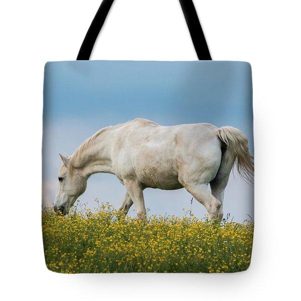 White Horse Of Cataloochee Ranch 2 - May 30 2017 Tote Bag