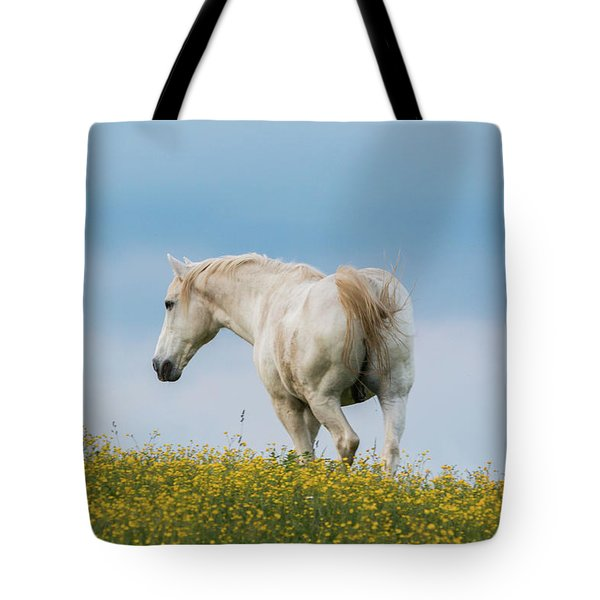 White Horse Of Cataloochee Ranch - May 30 2017 Tote Bag