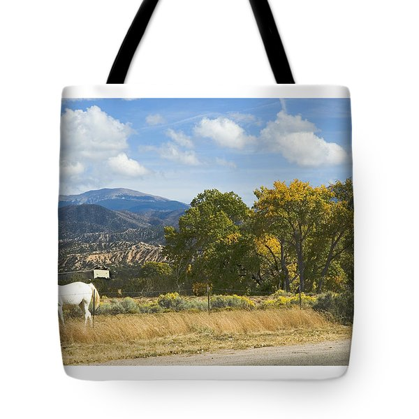 Tote Bag featuring the photograph White Horse by R Thomas Berner