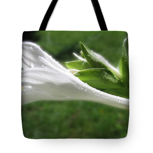 Tote Bag featuring the photograph White Hosta Flower 46 by Maciek Froncisz