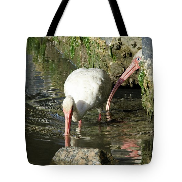 Tote Bag featuring the photograph White Ibis Couple by George Randy Bass