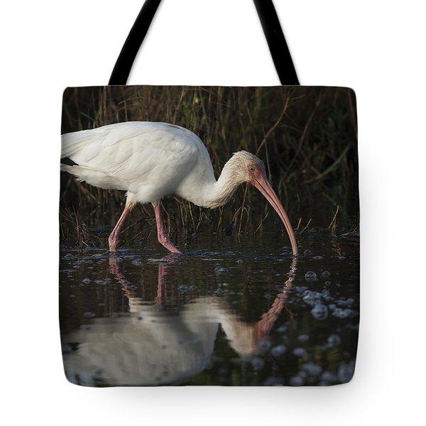 White Ibis Feeding In Morning Light Tote Bag
