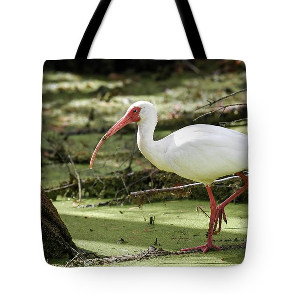 White Ibis Tote Bag by Gary Wightman