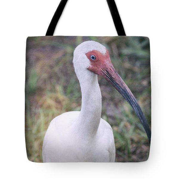 White Ibis In The Morning Light  Tote Bag by Saija  Lehtonen