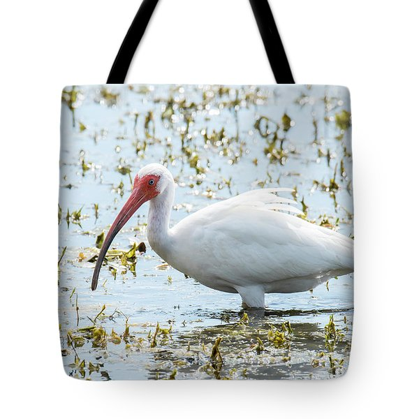 Tote Bag featuring the photograph White Ibis by Michael D Miller