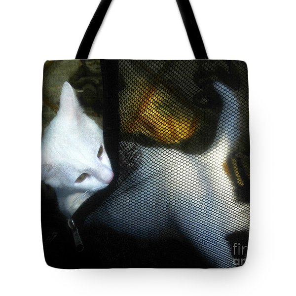 White Kitten Tote Bag by David Lee Thompson
